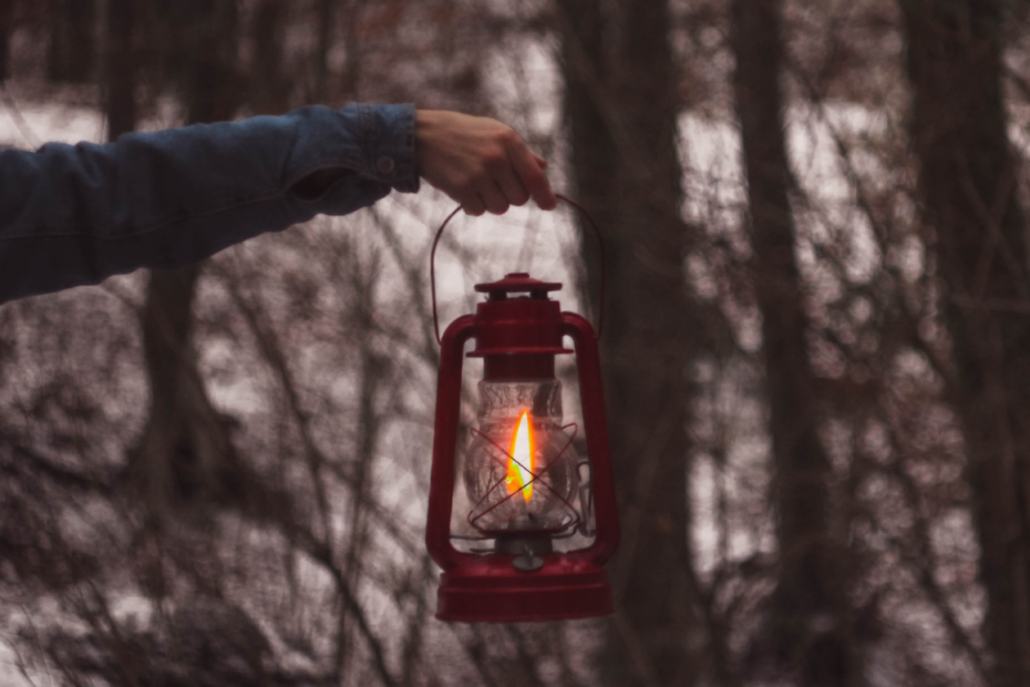 Photo of a man's arm holding out a lantern, in the woods