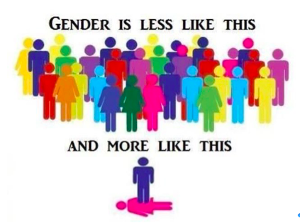 Image depicting male and female icons in different colours under the text 'Gender is less like this' above a male icon standing upon a female icon lying on the ground, below the words 'And more like this'