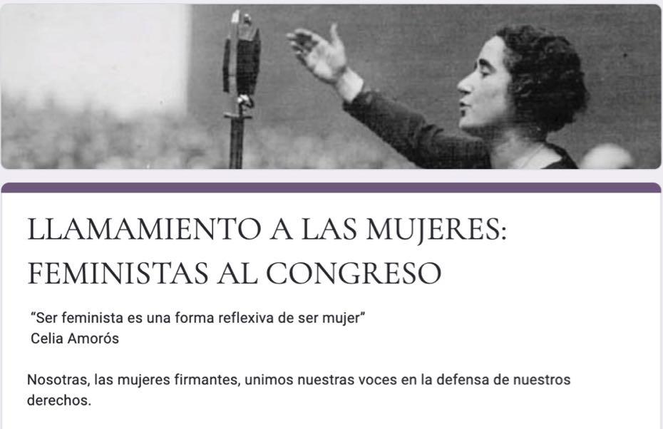 Feministas al Congreso - feminist political party